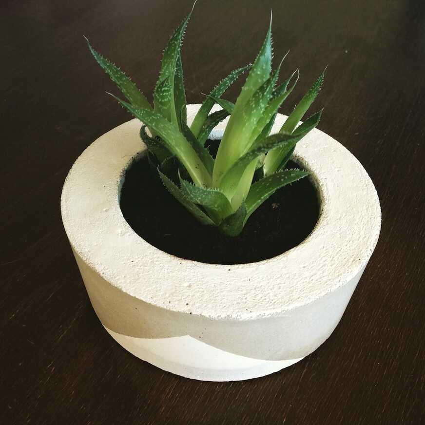 DIY-Beton-Blumentopf